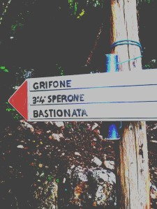 Zucco dell'Angelone 3-4 Sperone
